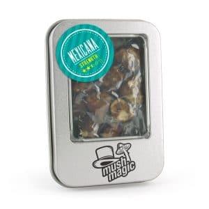Mexicana Truffels geven een vrolijke, energieke trip. De mildste Truffel