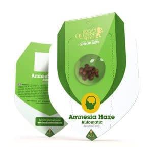 Amnezia Haze Autoflower
